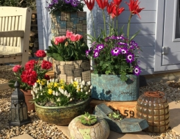 (GP8) Collection of garden planters