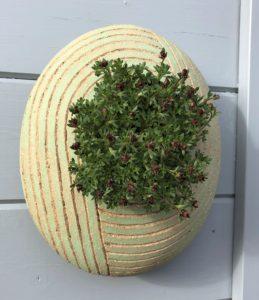 SGV7 - oval pod - Lime Zen garden-26 x22cms